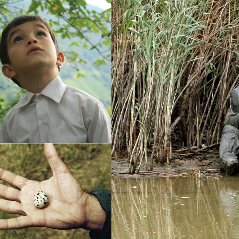Yusuf Üçlemesi (2007-2010): Kaplanoğlu'nun Anımsamaları