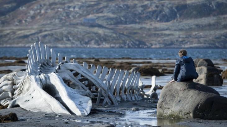 Leviathan (2014): Canavarın Yansıması