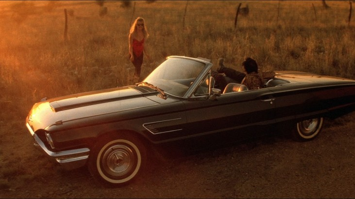 Wild at Heart (1990): Oz Diyarı'ndan David Lynch Dünyası'na