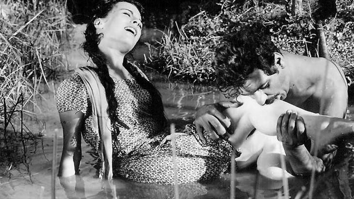Susuz Yaz (1964): İtaatkar Toprak, Asi Su