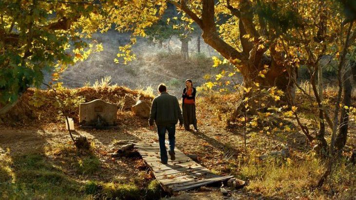 Ahlat Ağacı (2018): Akasya Ağaçları Akasya Kokuyor