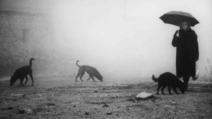 Kárhozat (1989): Yağmur Altında Sentetik Münasebetler